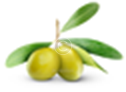 VEROLIOLIVO: olio extravergine di oliva 100% Italiano prodotto in Molise